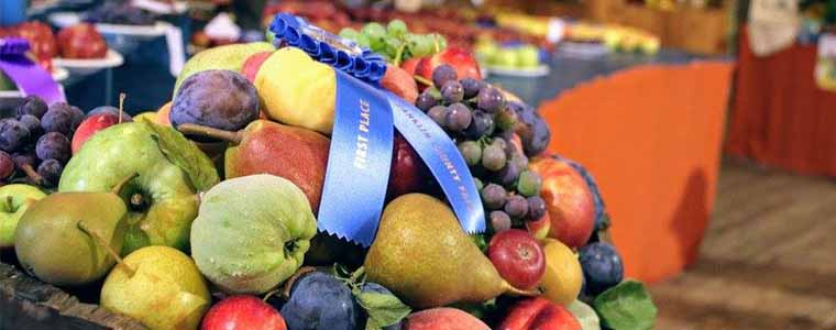 Award winning fruit at Franklin County Fair